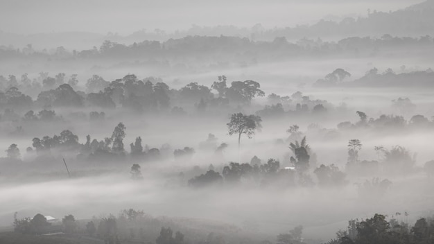 Zwart en wit berg en mist achtergrondbehang