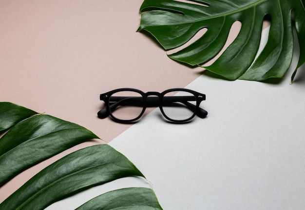 Zwart frame bril op abstracte achtergrond met groene tropische monstera bladeren
