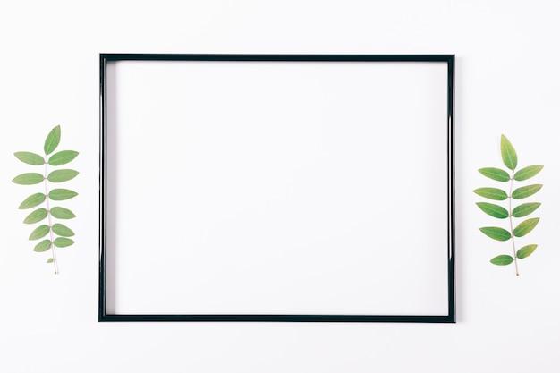 Zwart frame op een wit oppervlak en plantentakjes
