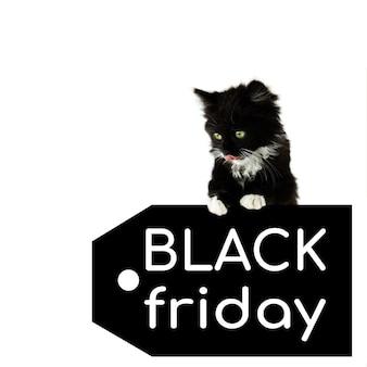 Zwart katje op een prijskaartje met een witte inscriptie black friday, geïsoleerd op een witte achtergrond