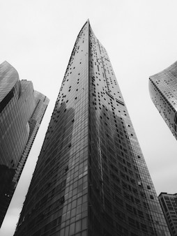Zwart-witte wolkenkrabbers in grote stad