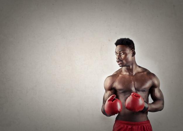 Zwarte bokser met handschoenen