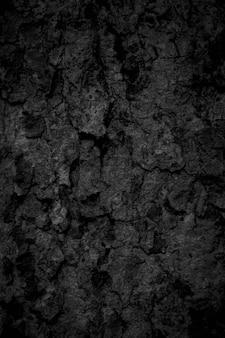 Zwarte boomschorsachtergrond natuurlijke mooie oude boomschorstextuur volgens de leeftijd van de boom met mooie schors in de zomer