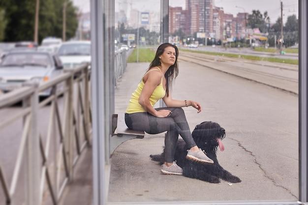 Zwarte briard en vrouwelijke eigenaar zitten op het station van het openbaar vervoer op straat en wachten op tram.