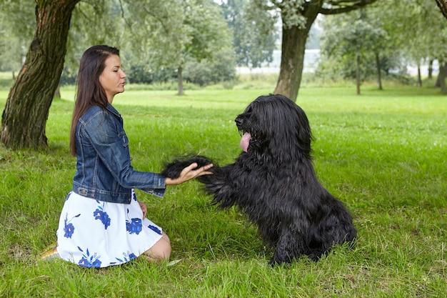 Zwarte briard geeft een poot aan zijn vrouwelijke eigenaar tijdens de training terwijl ze in de open lucht lopen.