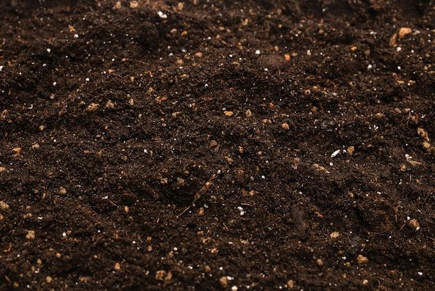 Zwarte grond voor planten achtergrond