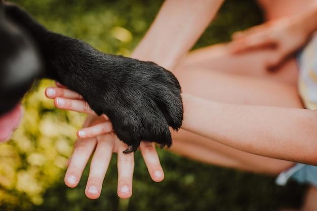 Zwarte hondenpoot die de handen van kinderen oplegt. uitzicht vanaf de bovenkant. de nadruk is bij de poot. vriendschapsconcept.