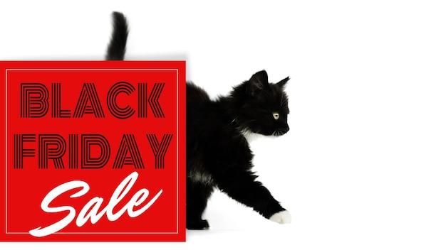 Zwarte kitten komt uit achter een rood bord met inscriptie black friday sale geïsoleerd op een witte achtergrond. banner, geïsoleerd op een witte achtergrond, kopieer ruimte