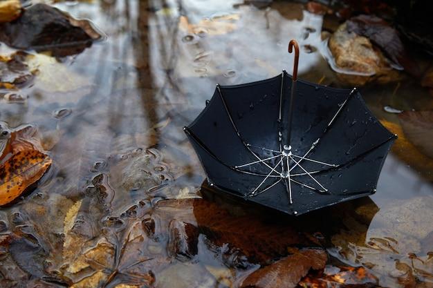 Zwarte paraplu in een poddle met herfstbladeren