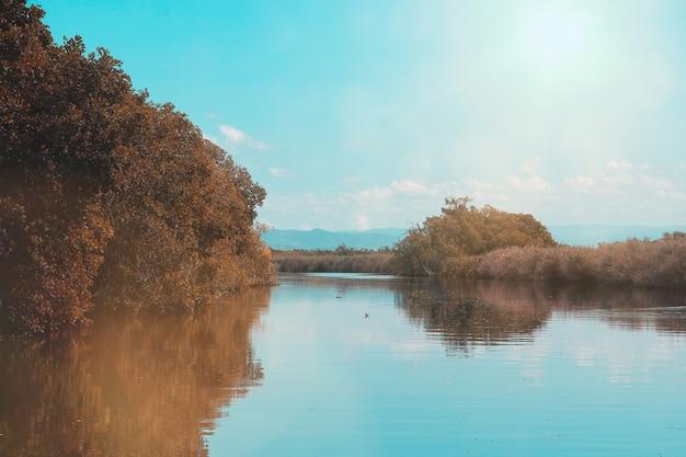 Zwarte rivier in jamaica