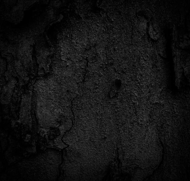 Zwarte schorsachtergrond natuurlijk mooie oude schorstextuur