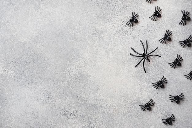 Zwarte spinnen op een grijze achtergrond