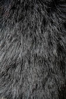 Zwarte vacht textuur achtergrond