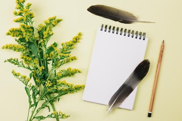 Zwarte veren; spiraalvormige blocnote; potlood en guldenroest of solidago gigantea bloemen tegen gele achtergrond