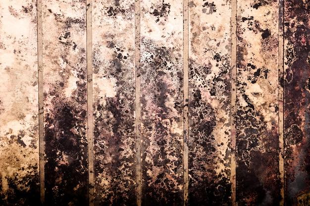 Zwarte vlekken van giftige schimmels en schimmelbacteriën op een muur. concept van condensatie, vocht, waterinfiltratie, hoge luchtvochtigheid en ademhalingsproblemen.