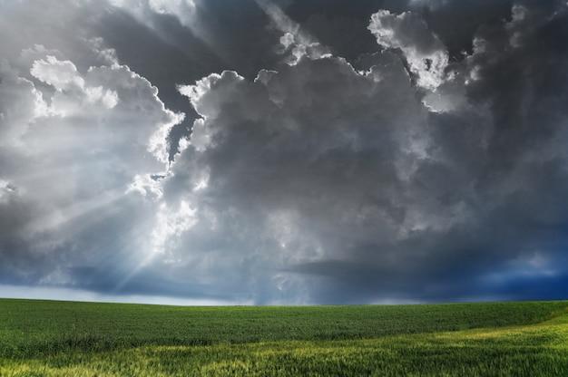 Zwarte wolken boven het veld