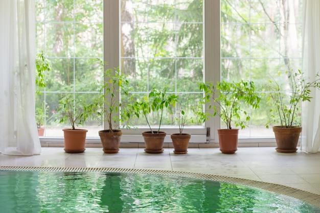 Zwembad met groot panoramisch raam met uitzicht op zomerbos