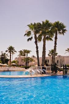 Zwembad met palmbomen