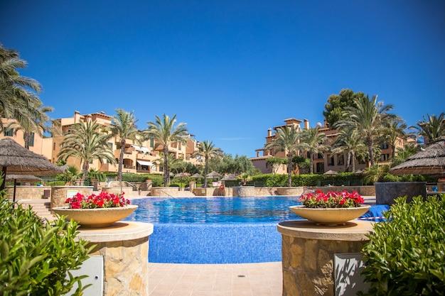 Zwembad met palmen en kleurrijke bloemen