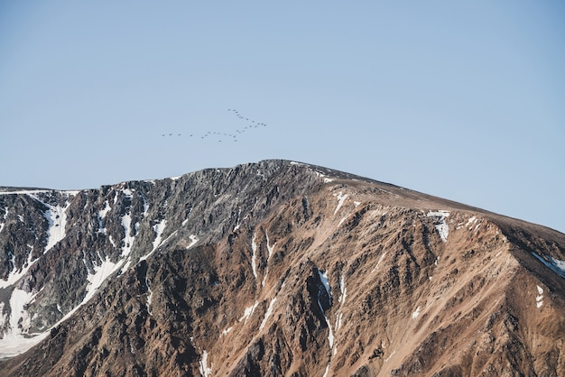 Zwerm vogels in blauwe hemel vliegen over besneeuwde bergkam. mooi schilderachtig landschap met silhouetten van trekvogels boven piek. vogeltroep boven rotsen met sneeuw. prachtig minimalistisch landschap.