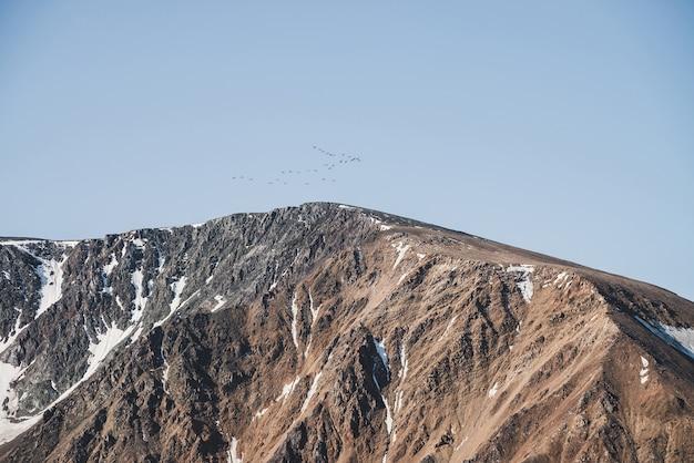 Zwerm vogels in blauwe lucht vliegen over besneeuwde bergkam.