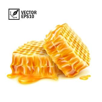 3d-realistische geïsoleerde twee honingraatplakken in honingplas