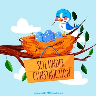 404 foutachtergrond met een vogel en een nest