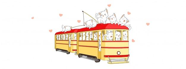 Aanbiddelijke katten binnen tram in de zomervakantie