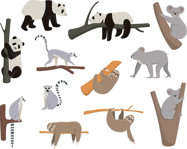 Aantal dieren die op bomen leven. panda, maki, luiaard, koala in verschillende poses.