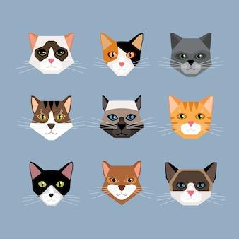 Aantal kattenhoofden in vlakke stijl. face kitten, snorharen en oren, snuit en wol.