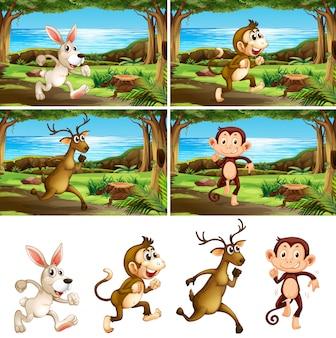 Aantal rennende dieren