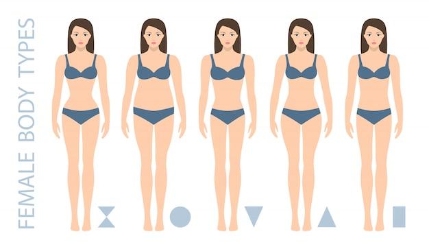 Aantal vrouwelijke lichaamsvormtypen driehoek, peer, zandloper, appel, afgeronde, omgekeerde driehoek, rechthoek. vrouw figuur types. illustratie.