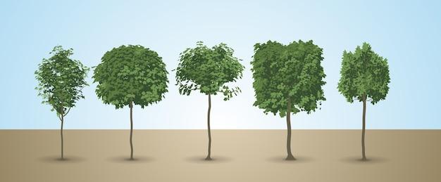 Aantrekkelijke boom vector set met blauwe hemelachtergrond