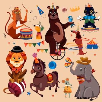 Aantrekkelijke circusdieren met leuke trucs