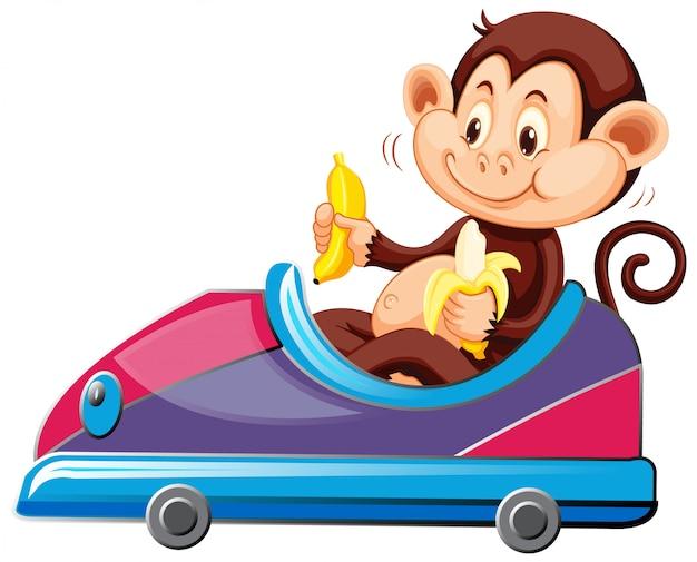 Aap die op stuk speelgoed auto berijdt die banaan eet