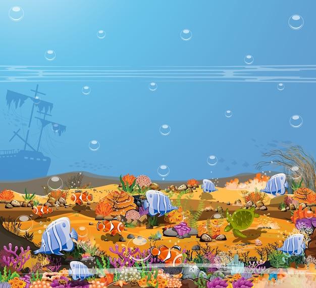 Aard van de onderwaterwereld het wonder van levende wezens