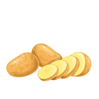 Aardappelen illustratie. rauwe aardappel hele wortelgewassen en gesneden stukjes.
