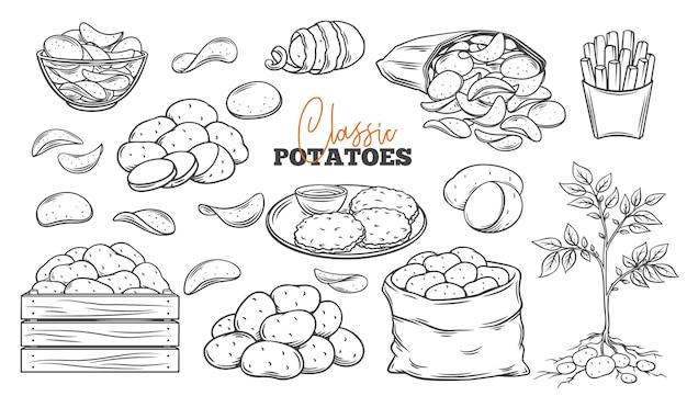 Aardappelproducten schetsen iconen set.