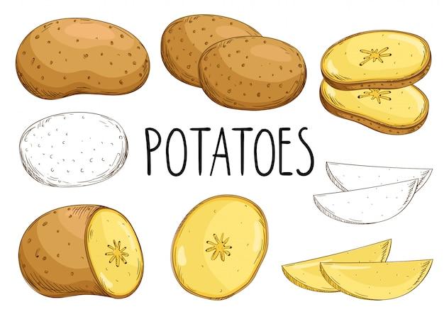 Aardappels op witte achtergrond worden geïsoleerd die
