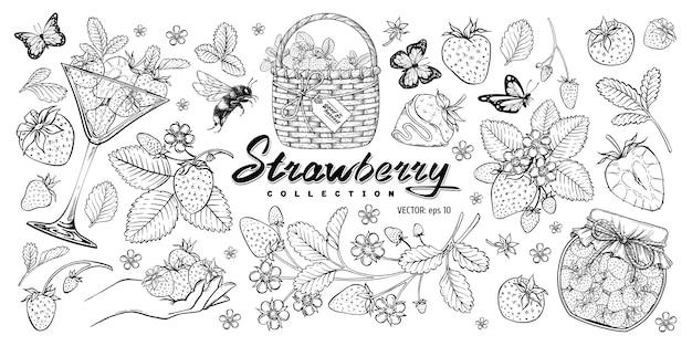 Aardbeien set.