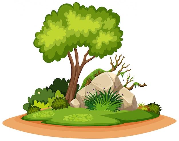 Aardlandschap van boom en rots in park