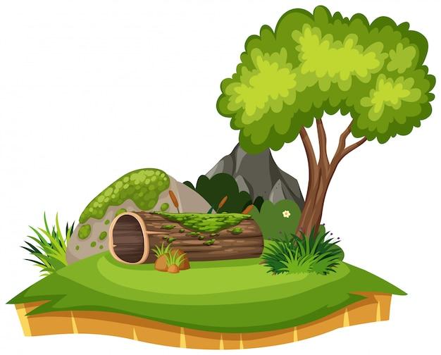 Aardlandschap van logboek en boom in park