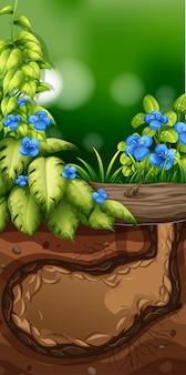 Aardscène met blauwe bloemen in tuin