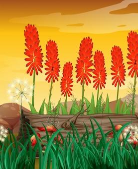 Aardscène met bloemen in tuin