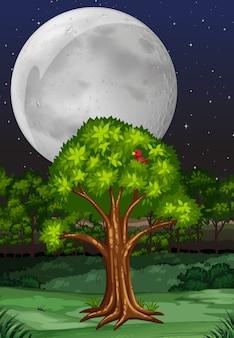 Aardscène met boom en fullmoon bij nacht