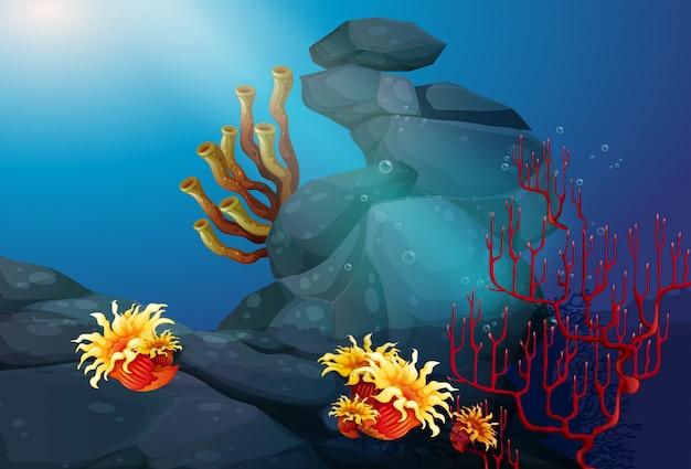 Aardscène met koraalrif onderwaterachtergrond