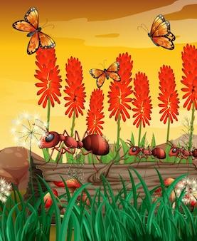 Aardscène met vlinders en mieren op logboek