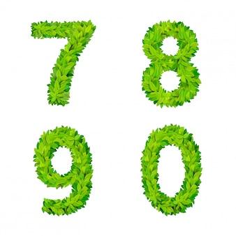 Abc gras laat letter nummer elementen moderne natuur plakkaat belettering blad bladverliezende set. 7 8 9 0 leaf leafed foliated natural letters latin english alphabet font collection.