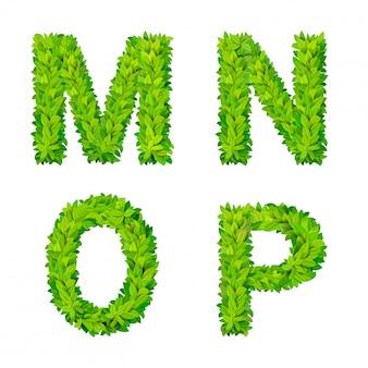 Abc gras laat letter nummer elementen moderne natuur plakkaat belettering blad bladverliezende set. mnop leaf leafed foliated natural letters latin english alphabet font collection.