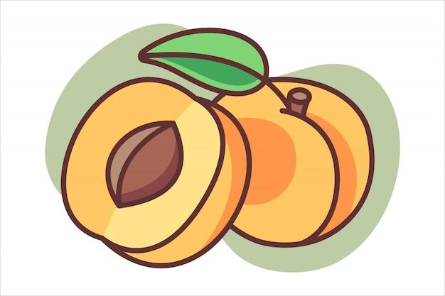 Abrikoos cartoon afbeelding